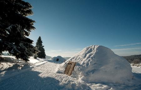 Bayerwald Expeditionen Schneeschuhwandern Neureichenau Igluübernachtung Bayerischer Wald Dreisessel