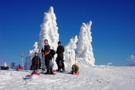 Schneeschuhwandern Schneeschuhtouren Schneeschuhwanderungen Schneeschuhlaufen Schneeschuhgehen
